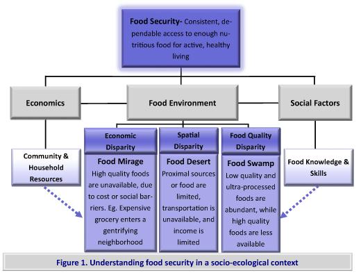 1c4f3e8f CPE Monthly: Food Deserts — Understanding Inequity, Seeking ...